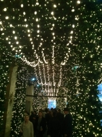 Holiday canopy on 5th Avenue, NYC